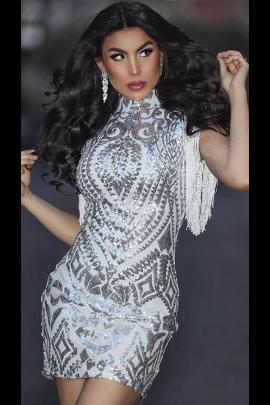 NSX Silver Fringe Mini Dress